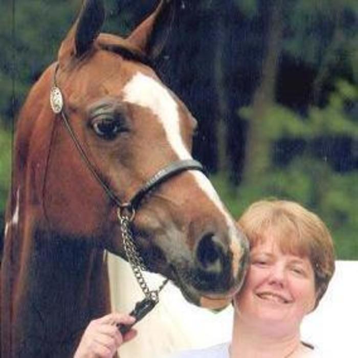 Dr. Janine  Callen <br> DVM, CCRT, CMT photo